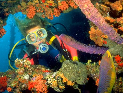 635818198997670012-Diving-Antilla-Shipwreck-1-Aruba-Tourism-Authority