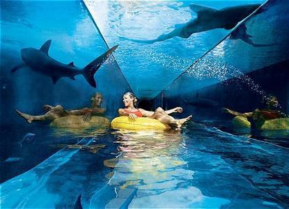 Atlantis_Royal_Towers_Suites_Paradise_Island-Paradise_Island-Bahamas-920948d456df4de3b47232e7d6e50f05