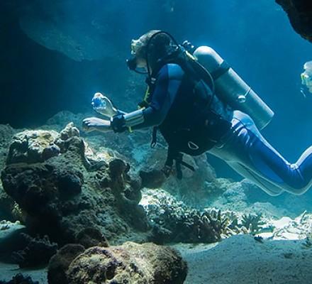 GL-Outdoor-Recreation-Cave-Diving-560015de7303a-440x400