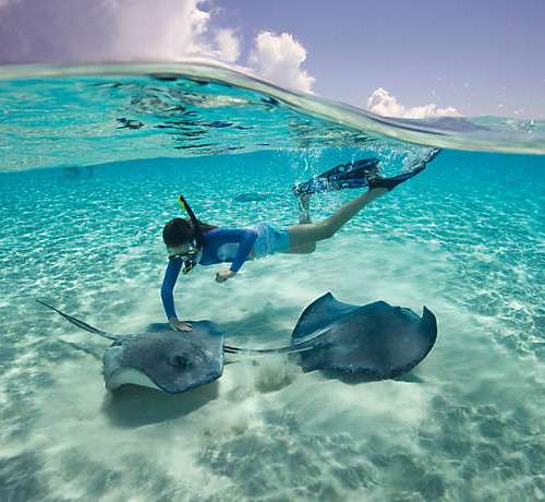 beach-vacations-snorkeling-sting-rays-01