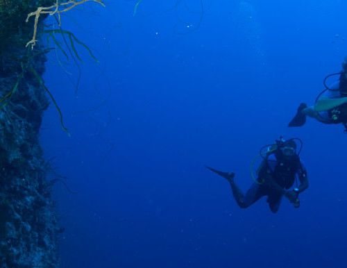 brian-kakuks-photos-wall-dive-800x386