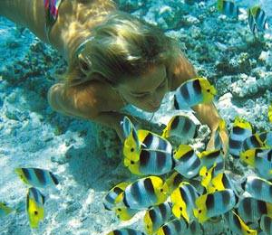 grand-bahama-specialty-dive-trips