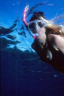harbour-island-snorkeling-01