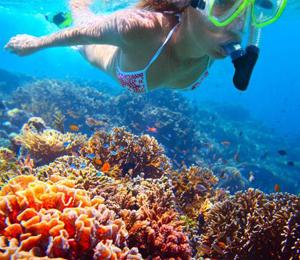 snorkeling-the-exumas-bahamas