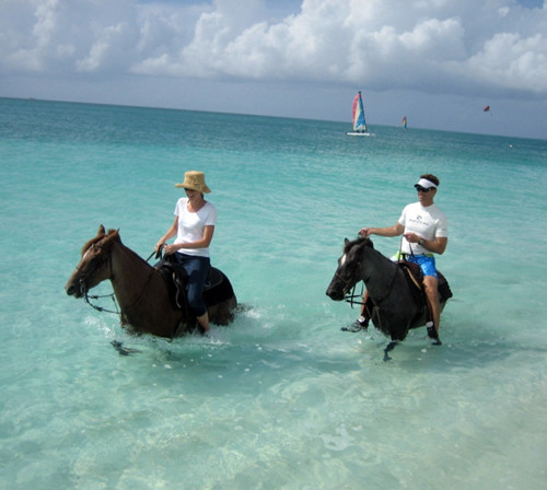 turks-and-caicos-horseback-swim