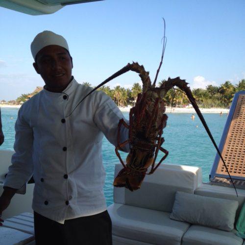 Lobster-meal
