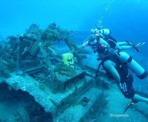 grand-bahamas-scuba