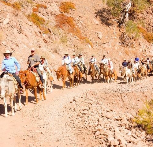 Burro-Ride-at-Bahia-Agua-Verde