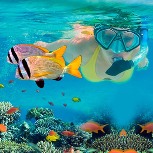 Snorkeling-Puerto-Morelo