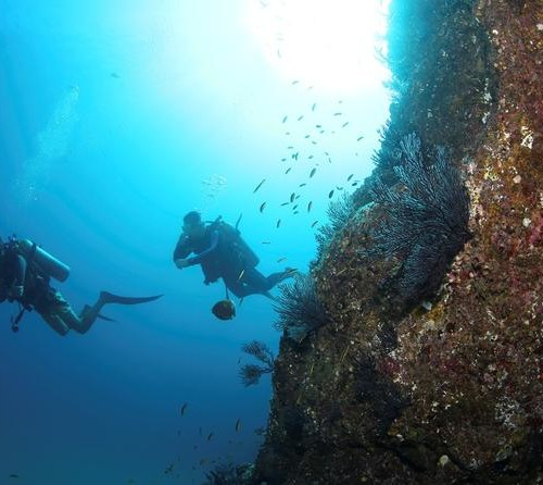 discover-scuba-diving-experience-for-beginners-in-cabo-san-lucas-188885