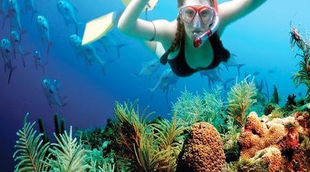 puerto-morelos-snorkel-thumb(450x250)