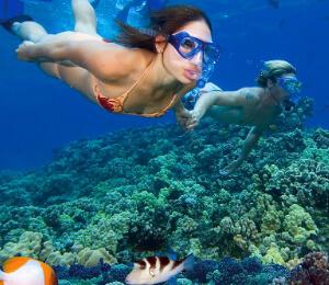 puerto-vallarta-snorkeling